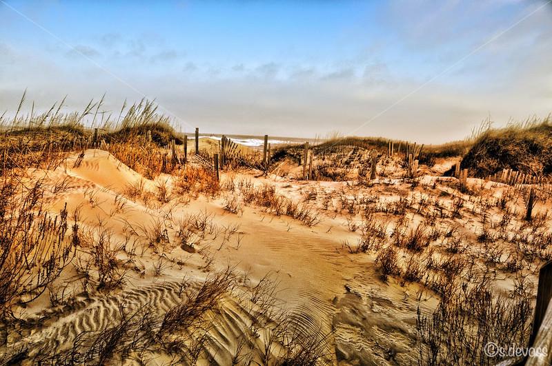 beachscape_0117HDR Wmark.jpg