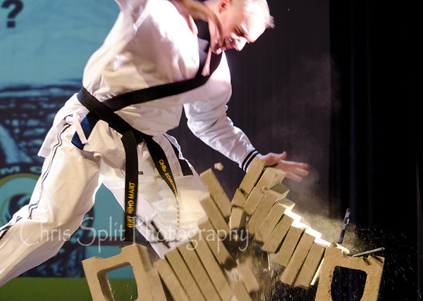 Black Belt Spectacular January 2015