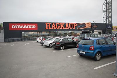 Holtagarðar
