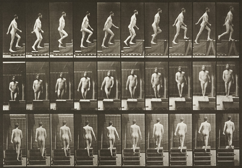 Nude man ascending stairs (Animal Locomotion, 1887, plate 90)