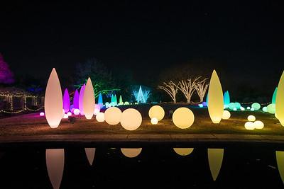 Botanical Garden - Xmas 2013