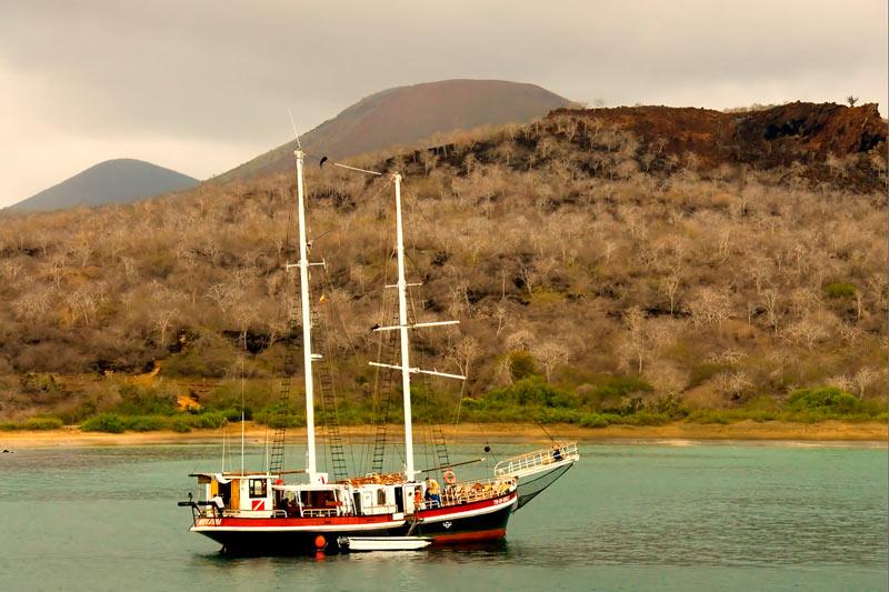 lagoonboat244x6-(11).jpg