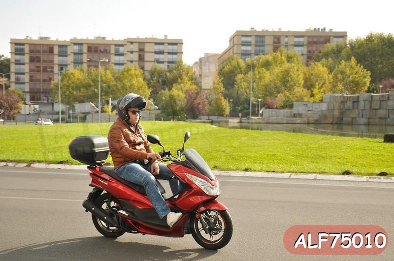 ALF75010.jpg