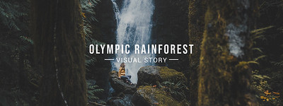 Olympic Rainforest Visual Story