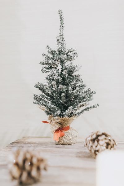 Nicole_Jason_Wedding_Holiday_Inn_Elgin_Illinois_December_30_2018-22.jpg
