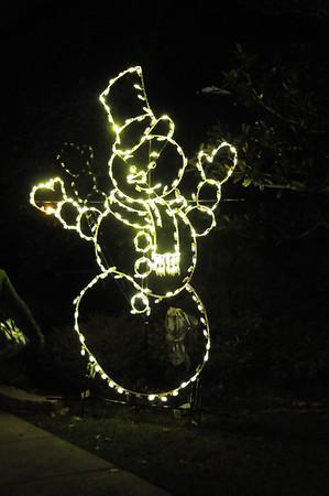 Zoo Lights 11-30-13