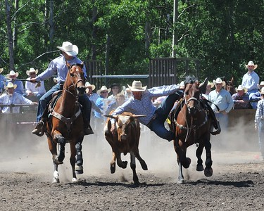 Steer Wrestling (Section 1)