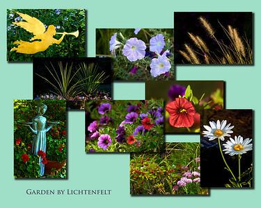 Lexington Kentucky - Lichtenfelt Flowers -- Lexington Kentucky Photographer
