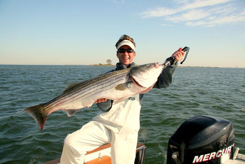 This was the fish taken on bait at 32 pounds.   Another excellent day on the water.  Captain Al Lorenzetti
