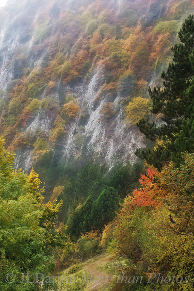"Hohe Wand - autumn foliage along one of the ridge's ""high walls"""