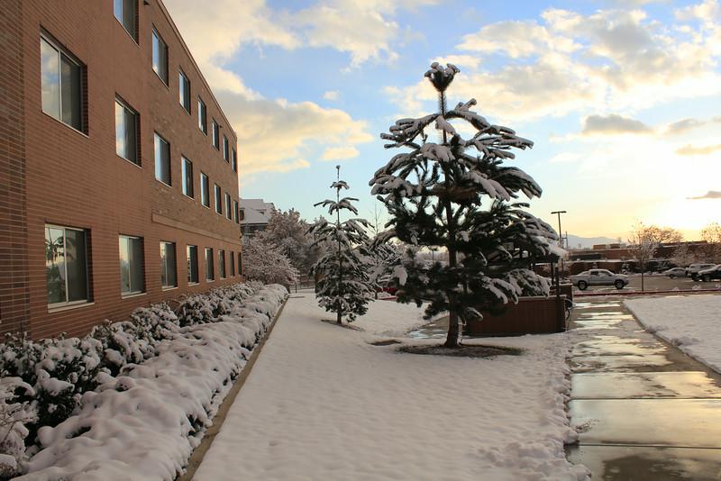 Winter_Scenery_12_19_2012_4066.JPG