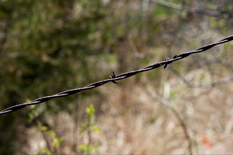 015-barbed_wire-ankeny-23apr16-18x12-003-7940