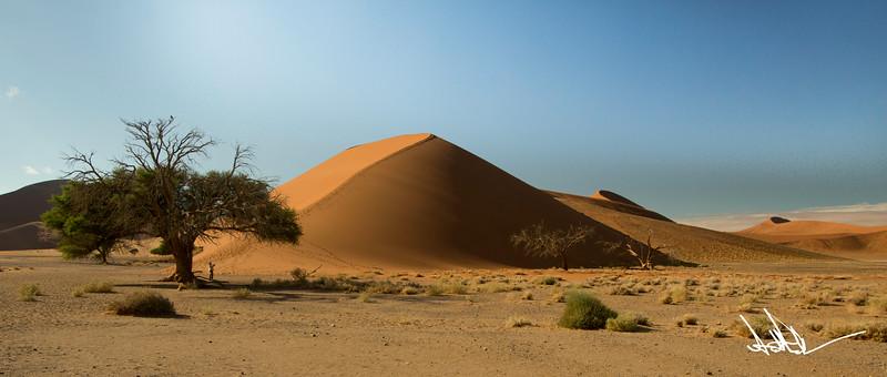 Dune 45-1.jpg