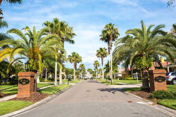 9913 Emerald Links Drive Tampa FL 33626 | Top MLS