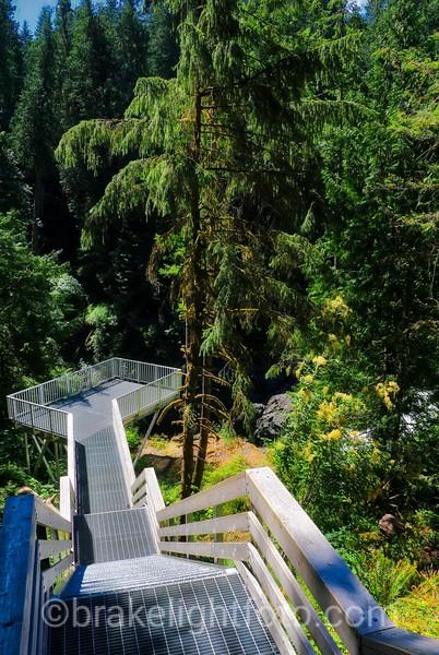 Elk Falls Stairs & Viewing Platform