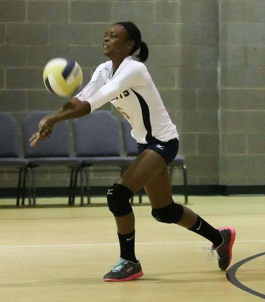 VCA-Volleyball-224.jpg