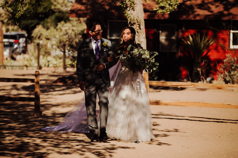 Elise&Michael_Wedding-Jenny_Rolapp_Photography-505.jpg