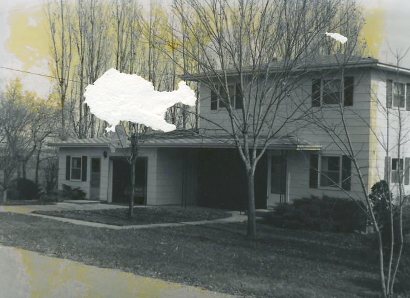 Lein House.jpg