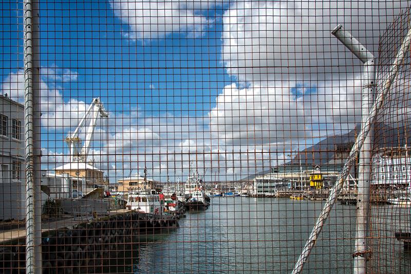 2014-08Aug26-Capetown-S4D-153.jpg