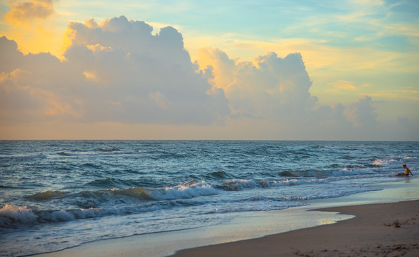 Around Palm Beach