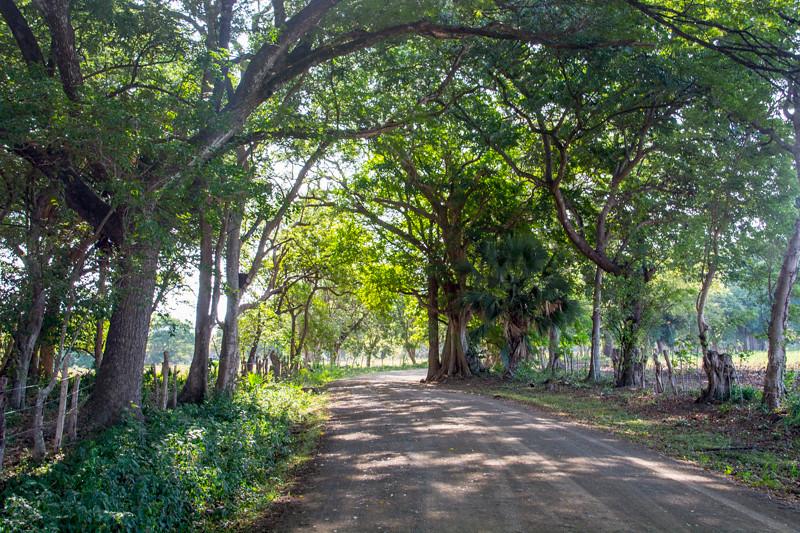 Costa Rica_Landscapes-1-2.jpg