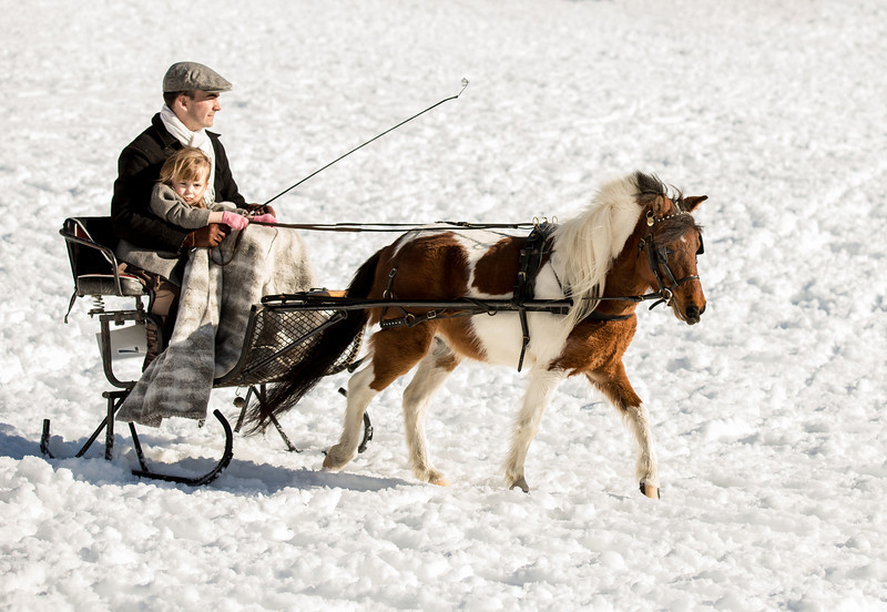 """Check out the little girl with the cute little """"pink"""" gloves on...notice her hands are """"on"""" the reins."""