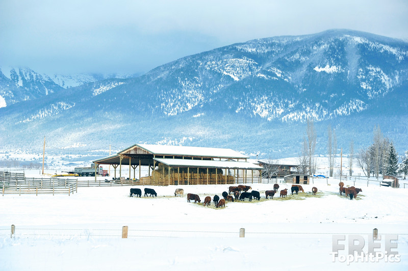 Winterscapes On A Road Trip In Montana, USA