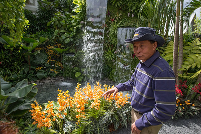 Raymond Toh shows off his Kranji Tropical Garden (Singapore) at RHS Chelsea
