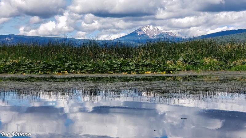 07-16-2019 Crystal Creek Kayak-21.jpg