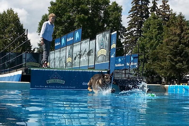 2015.8.5 Winnebago County Fair Dock Dogs (4).jpg