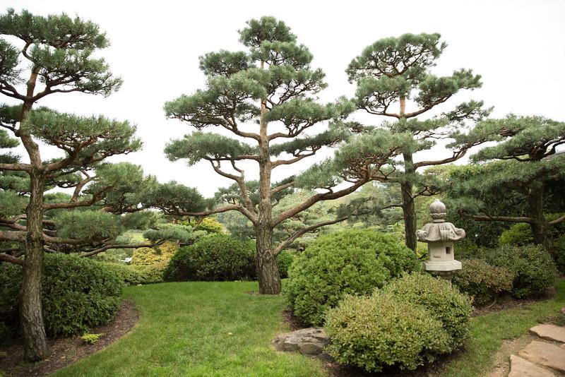Chicago Botanic Garden 094.jpg