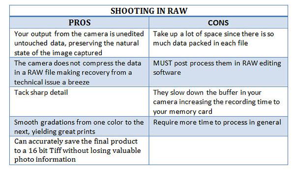 PRO-CON-RAW-CHART-3.jpg