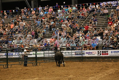 BULL FIGHTING Saturday September 23