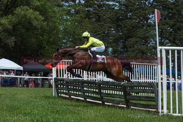 Foxfield Spring Races 2017