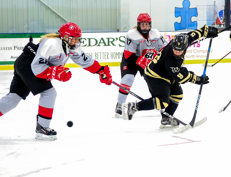 EHB_JWHL_Boston_Pridevs67s-56.jpg
