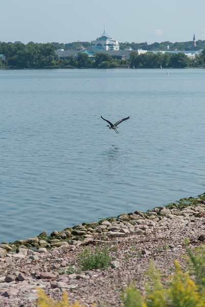 Fishing at Onondaga Lake Sept 2020-15.jpg