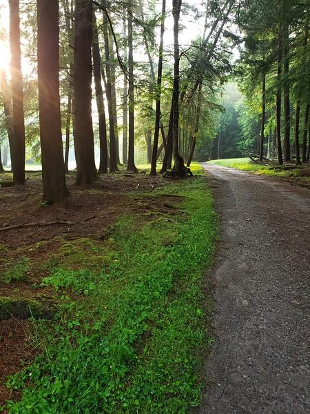 Tom's Run Road