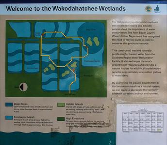 2015-10 | Wakodahatchee Wetlands | Delray Beach | Florida