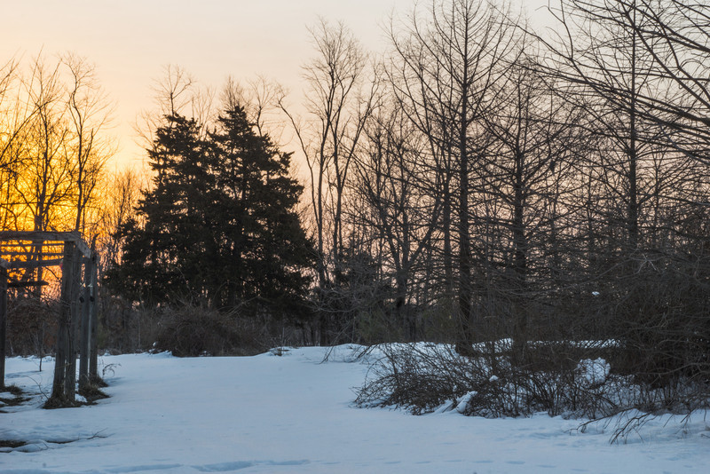 Sunrise on a day that melts off several inches of snow.