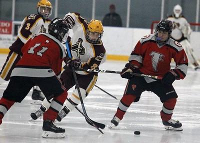 HS Sports - Riverview vs. Divine Child Hockey 20
