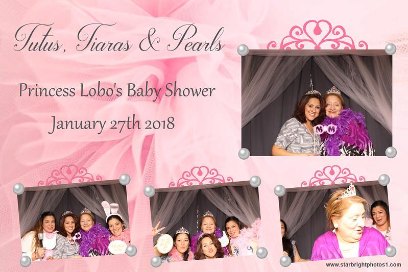 Lobo Baby Shower_07.jpg