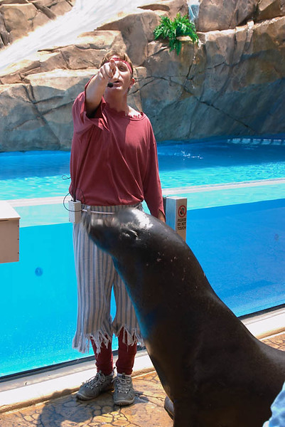 SeaWorld-006.jpg