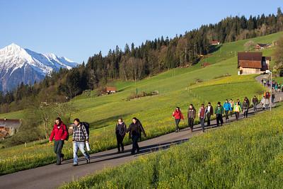 WRC 2014, Schwanden bei Sigriswil, Switzerland