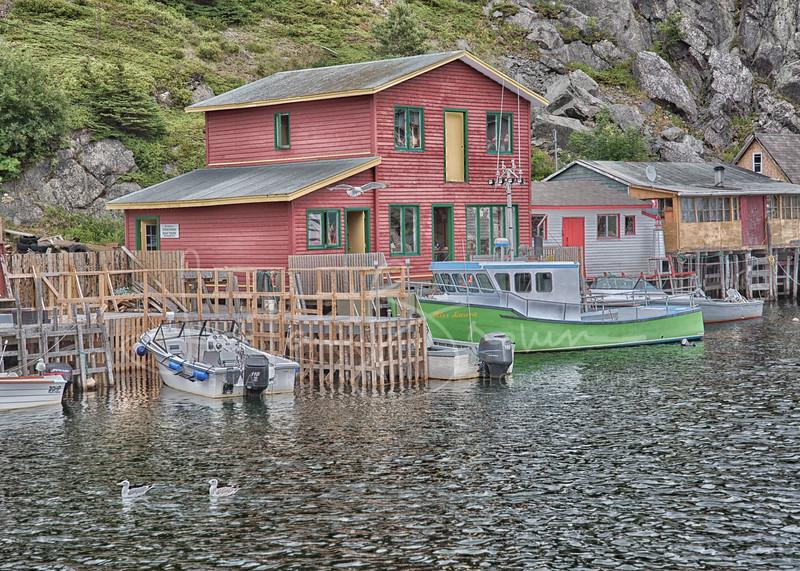 Quidi Vidi Village.jpg
