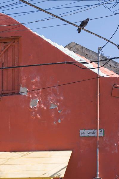 Cancun_2008_01_26_0066.jpg