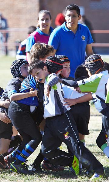 1151_09-Nov-13_RugbyOrcasitas.jpg