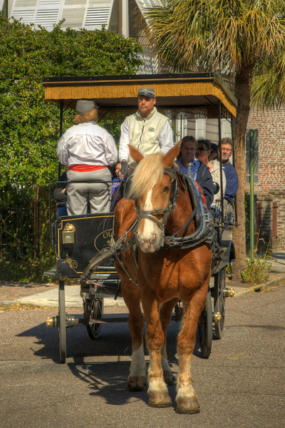 A horse drawn carriage tour on Church Street in Charleston, SC on Saturday, March 9, 2013. Copyright 2013 Jason Barnette