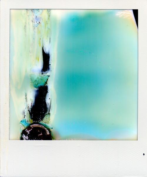 polaroid038.jpg