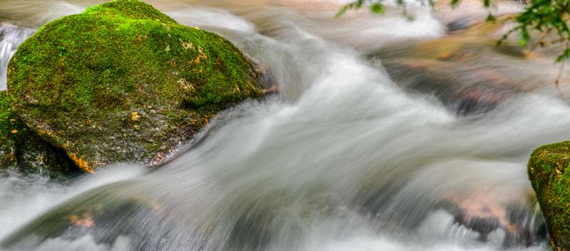 FRESH WATER   42