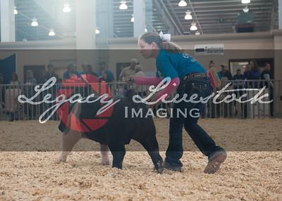 2015 Kansas Junior Livestock Show